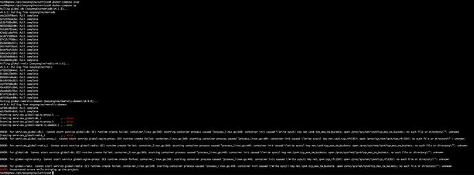 root_aphex___opt_easyengine_services